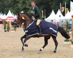 jumper Diego de Semilly (Holsteiner, 2010, from Diarado)