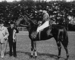 horse Persimmon xx (Thoroughbred, 1893, from Saint Simon xx)