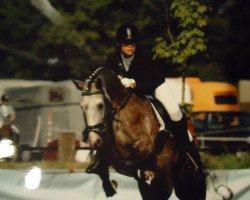Nika 14 (German Riding Pony, 2004, of Nantano)