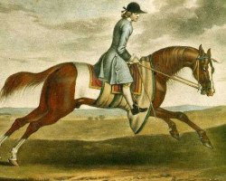 horse Crofts Partner xx (Old Partner xx) (Thoroughbred, 1718, from Jigg xx)