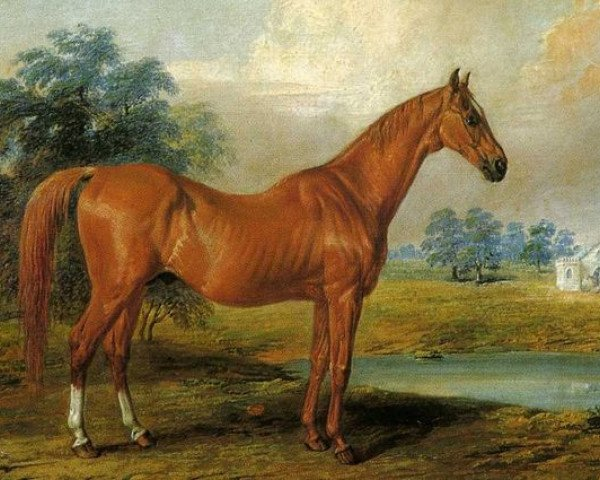 horse Glencoe xx (Thoroughbred, 1831, from Sultan xx)