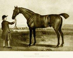 horse Herod xx (Thoroughbred, 1758, from Tartar xx)
