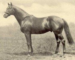 horse Hurry On xx (Thoroughbred, 1913, from Marcovil xx)