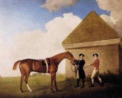 horse Eclipse xx (Thoroughbred, 1764, from Marske xx)
