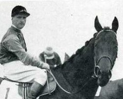 horse Big Game xx (Thoroughbred, 1939, from Bahram xx)