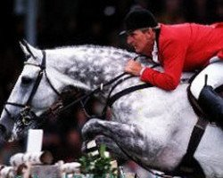 horse Bon Ami (Belgian Warmblood, 1985, from Elegant de L'Ile)