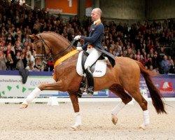 horse Vivaldi (Royal Warmblood Studbook of the Netherlands (KWPN), 2002, from Krack C)