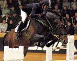 jumper Converter (Oldenburg, 2000, from Contender)