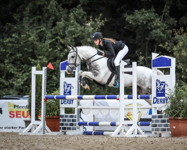 jumper Maryland 10 (Pony without race description, 2014)