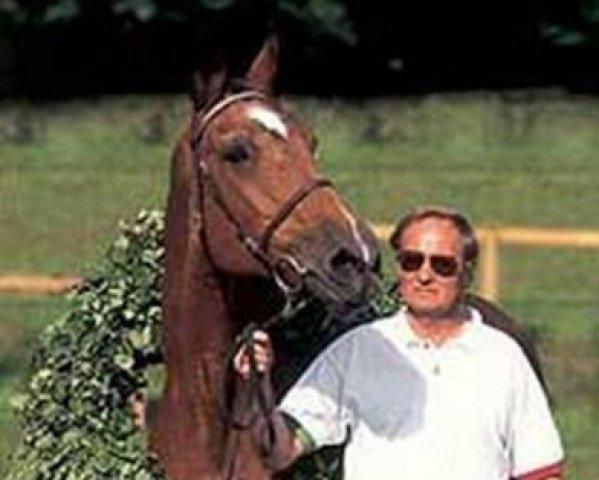 horse Folia (Holsteiner, 1969, from Maximus)