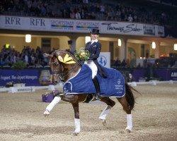 dressage horse Vitalis (Royal Warmblood Studbook of the Netherlands (KWPN), 2007, from Vivaldi)