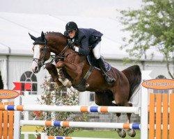 horse Ogano Sitte (Belgium Sporthorse, 1998, from Darco)